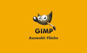 Gimp Webinar - Auswahlwerkzeug Fläche