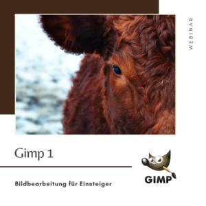 WEBINAR - Gimp 1 - Bildbearbeitung für Einsteiger