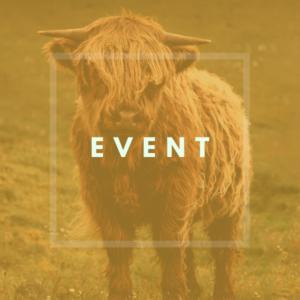 kueheimnetz Shop Kategorien - EVENT