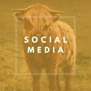 kueheimnetz Shop Kategorien - SOCIAL MEDIA